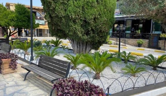 Bellapais Manastırı ve çevresinde düzenleme
