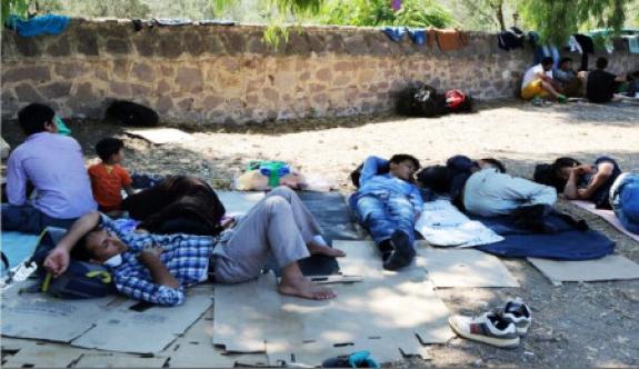 12 binden fazla Suriyeli koruma talebi istedi
