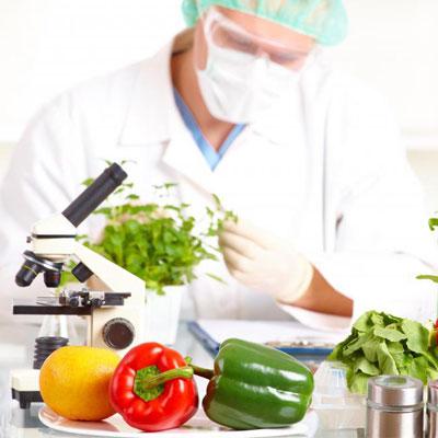 Gıda analizleri devam ediyor