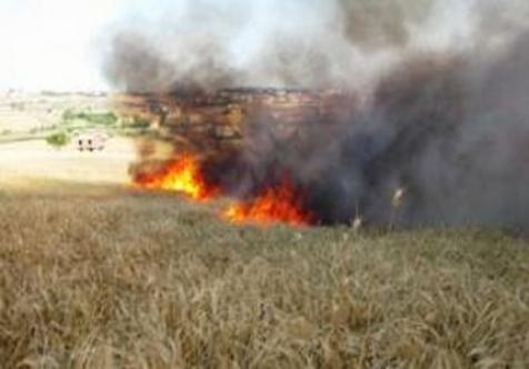 Karpaz'da yangın