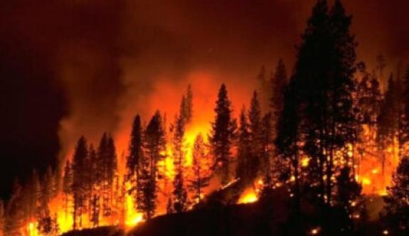 Yangın ihmalleri araştırılacak
