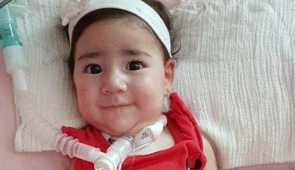Bakanlar Kurulu'ndan Asya bebek kararı